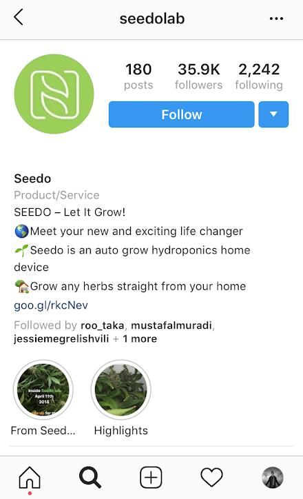 Seedo Instagram Growth
